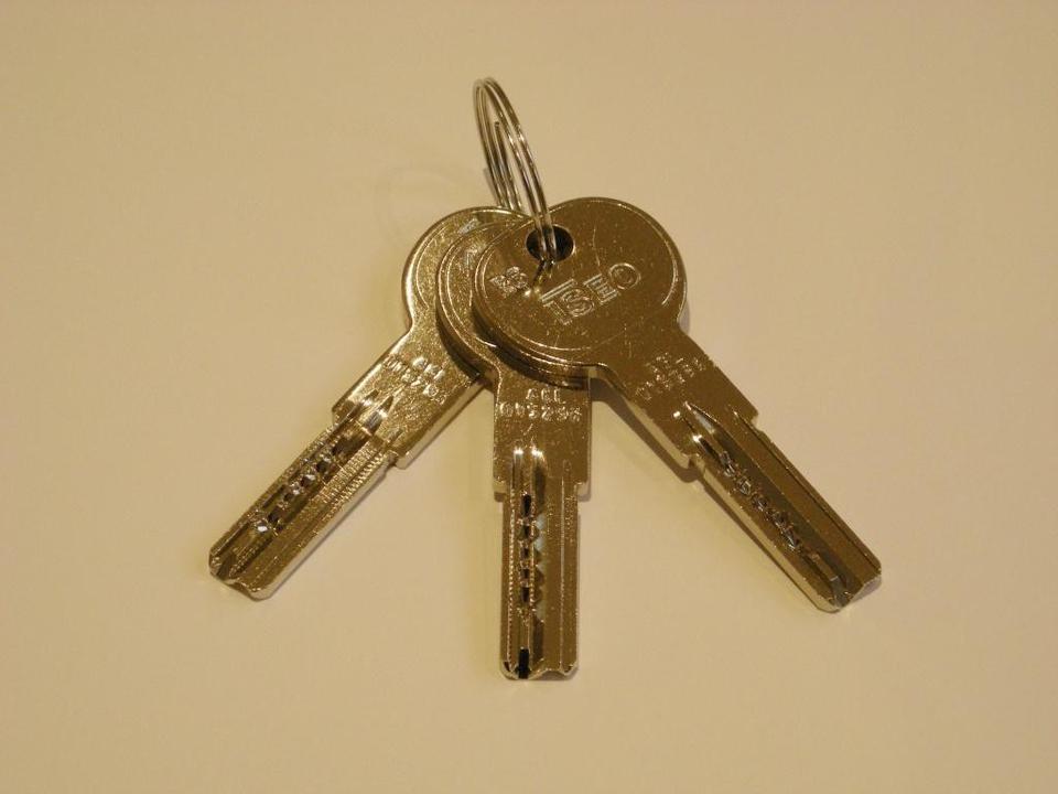 Cylinder ISEO R6 10 Keys House Door Key Lock System Cylinder