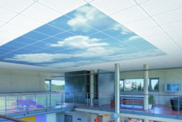 This is the name under which we deliver our printed ceiling tiles – with designs prepared based on your requirements and ideas. Such as with logos, text, graphic pictures, letterings, symbols, pictograms, etc. This also includes various decorative elements. The picture ceilings let us raise the roof with anything informative or that just looks good. The options range from individually printed tiles through to a large area ceiling design.