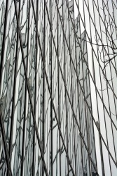 Laminated Glass - Romag