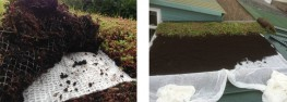 Wallbarn is the sole distributor of AQUATEN PLUS™ the ultra-hydrophilic fabric for use a in variety of applications, including landscaping at ground and roof level as well as stormwater management and flood protection.AQUATEN PLUS™ is a geo-composite mes...