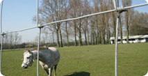 Fencing Wire image