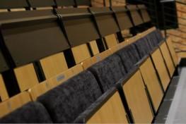 Twin Seat - Auditorium Furnitures image