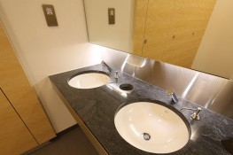 Granite - Vanity Tops image