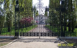 Eagle Residential Swing Gate EAGRSG001 image