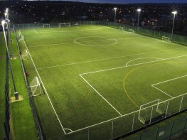 3G Artificial Turf image