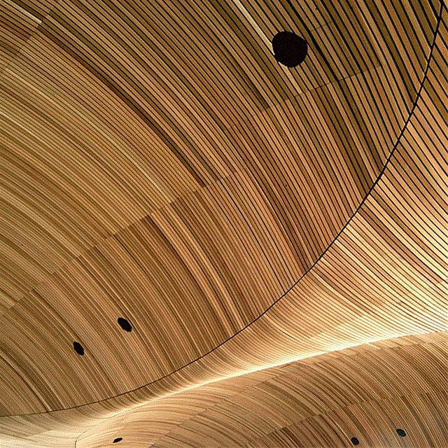 Suspended Timber Ceiling By Bcl Timber Projects