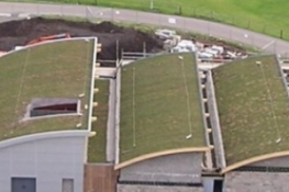 BriggsAmasco Green Roofs image
