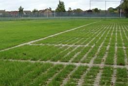Grasscrete image