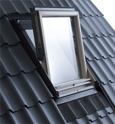 Centre Pivot Roof Window image