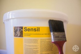 Beeck Sensil - Highly Durable ASF Internal Paint image