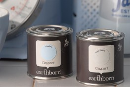 Earthborn Claypaint image