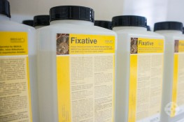 Beeck Fixative - Primer and consolidator for mineral surfaces prior to applying Beeck silicate paints image