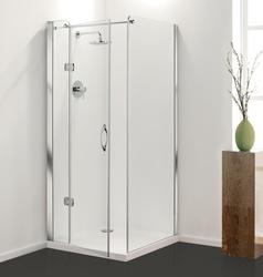 Premier Frameless Hinged Door image