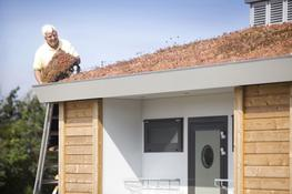 MobiRoof - Green Roofing - Mobilane UK