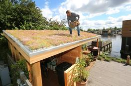 MobiRoof - Green Roofing image