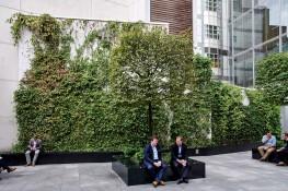Green Walls image