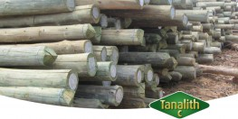 TANALITH C is an traditional formulation preservative product, based on chromated copper arsenate. Although having restricted use in European markets, TANALITH C preservative is still widely used throughout Africa for the long term protection of heavy duty tim...