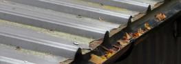 Rooflock Twelve for Cut Edge Corrosion Treatment - Rooflock