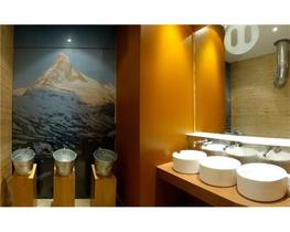 Timber Pale Ale Urinal (PWDPALE) - Commercial Washrooms Ltd