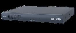 AF 250 - 250-Watt Amplifier image