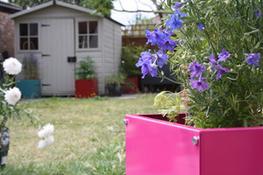 Planters - External Planters image