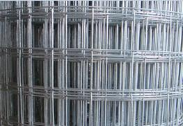 Hot-Dipped Galvanized Welded Wire Mesh - Anping Vical