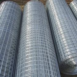Electro Galvanized Welded Wire Mesh - Anping Vical