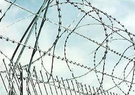 Galvanized Concertina Wire and razor barbed wire size image