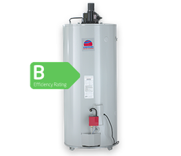 Andrews Water Heaters Fan Flued water heaters offer versatility due to the added fan assisted flue, making them suitable for applications where a conventional flue run is difficult. They have previously been installed in public and historical buildings.  Model...
