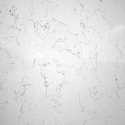 White Lyra (NEW) image