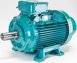 W Cast Iron motors image