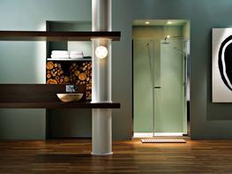 Radiance Pivot Inline Door image