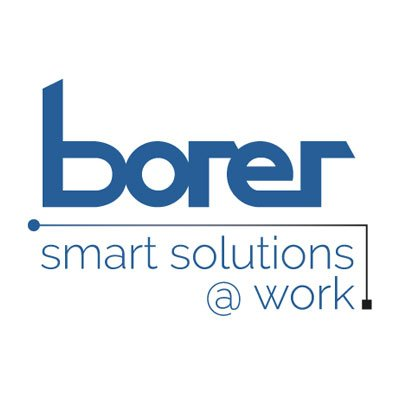 Borer Data Systems Ltd