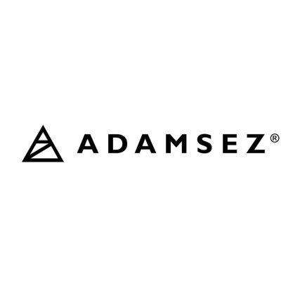 Adamsez N I Ltd
