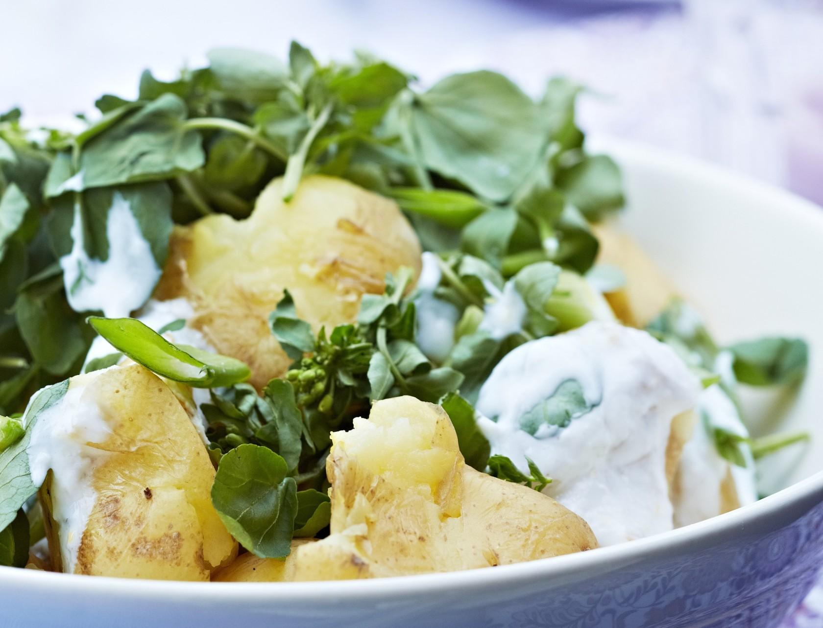 Kold kartoffelsalat med knuste kartofler og dressing