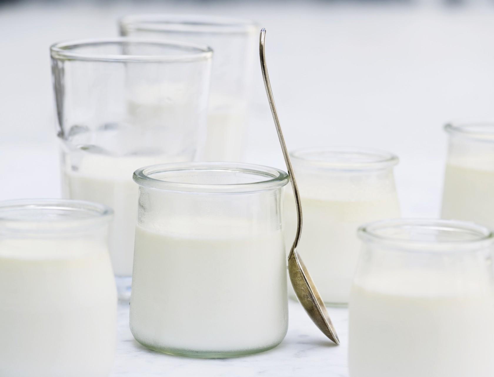 Grundopskrift på hjemmelavet yoghurt - nem og lækkert!