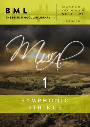 SYMPHONIC STRINGS - VOLUME 1