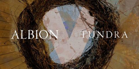 Albion V Tundra