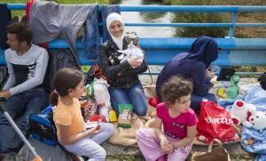 Amena and the Refugee Cat