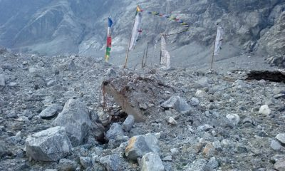 Prayer flags in Langtang for those buried under the rubble