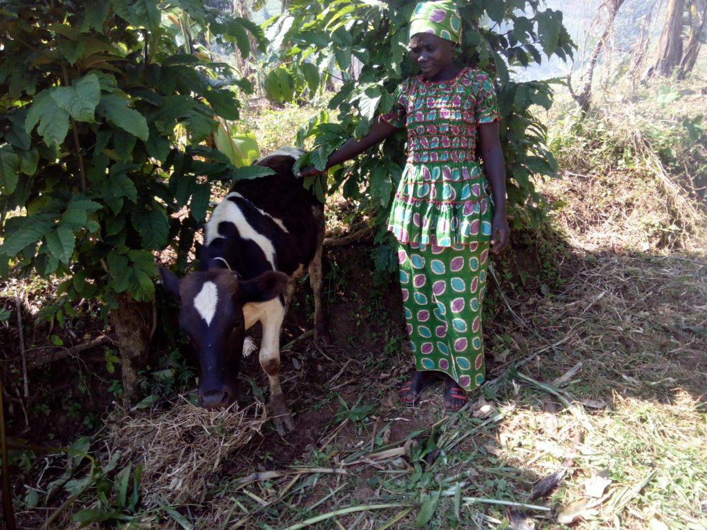 Goreth with the cow she bought with help from her Church, trained by Raising Families