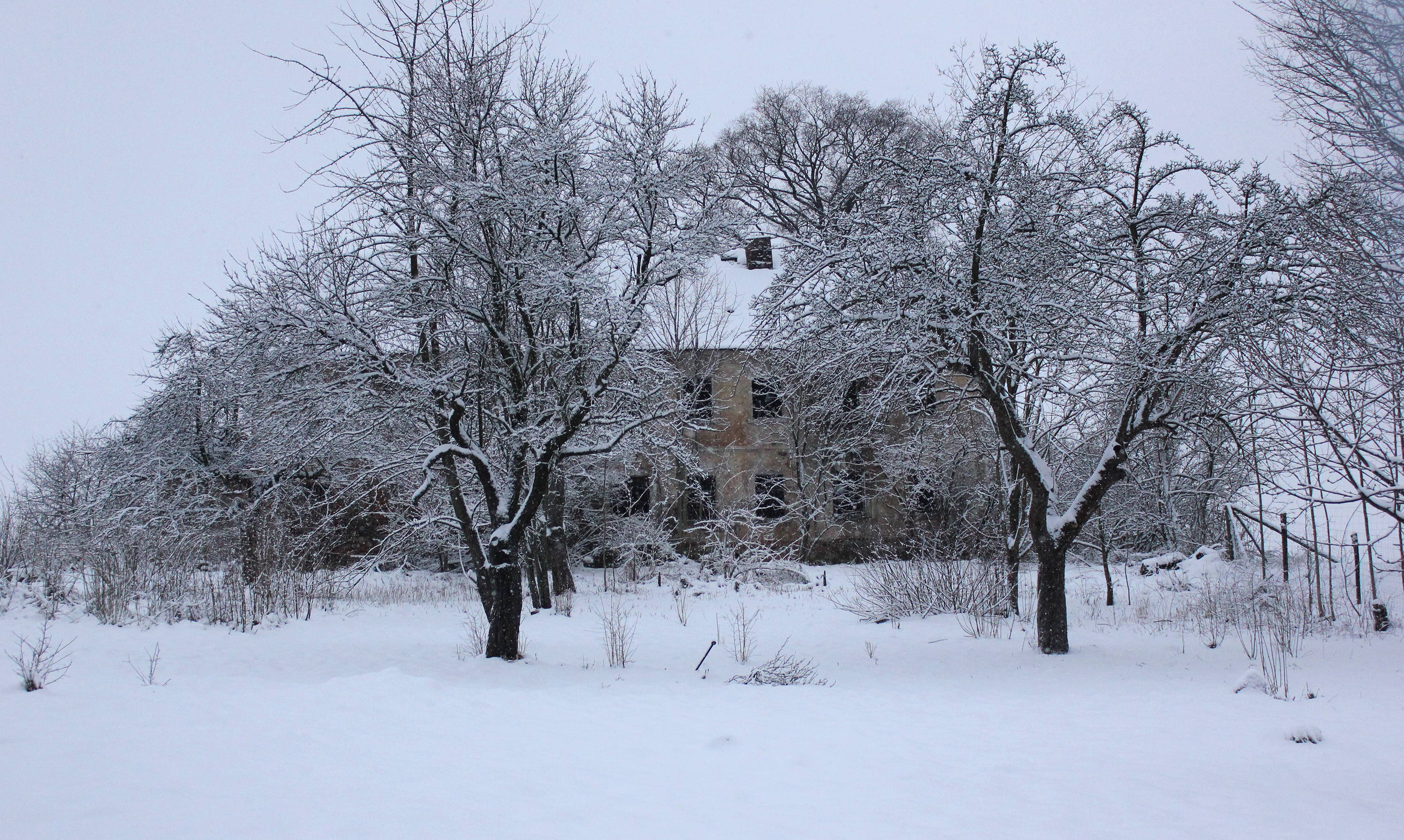 House No. 51 under snow
