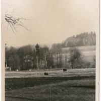 Srbská 002_1962.jpg