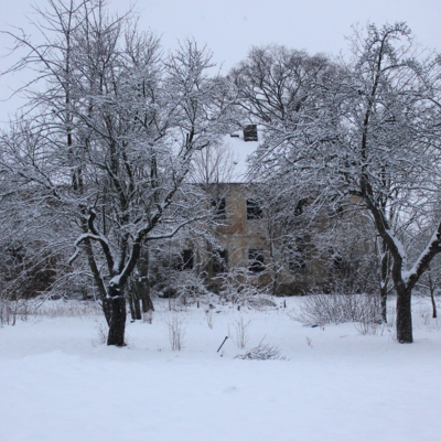 51-under-snow.jpg