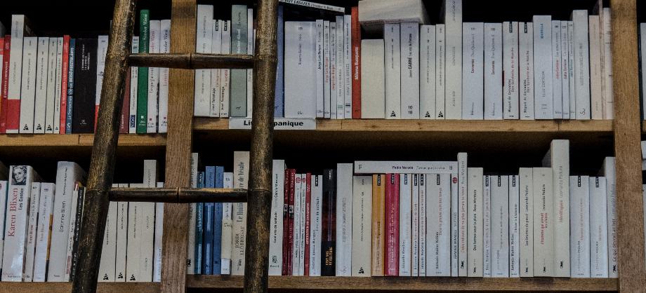 Educación: La lectura y el resumen