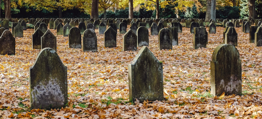 Tecnología e Información: Opinión sobre seguros funerarios