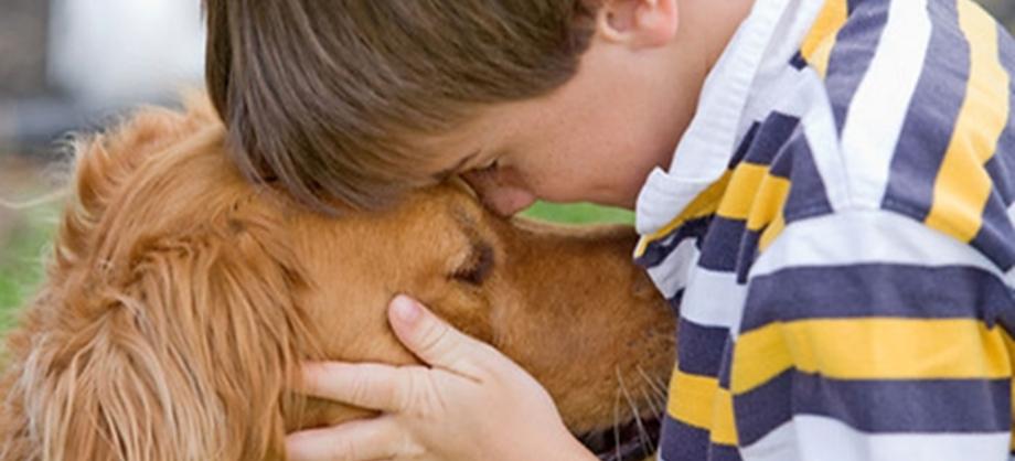 Ciencia: Sexto sentido en las mascotas que detecta enfermedades