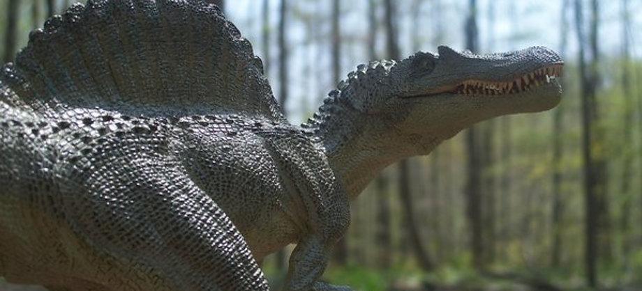 Ciencia: Spinosaurus, el primer dinosaurio semiacuático