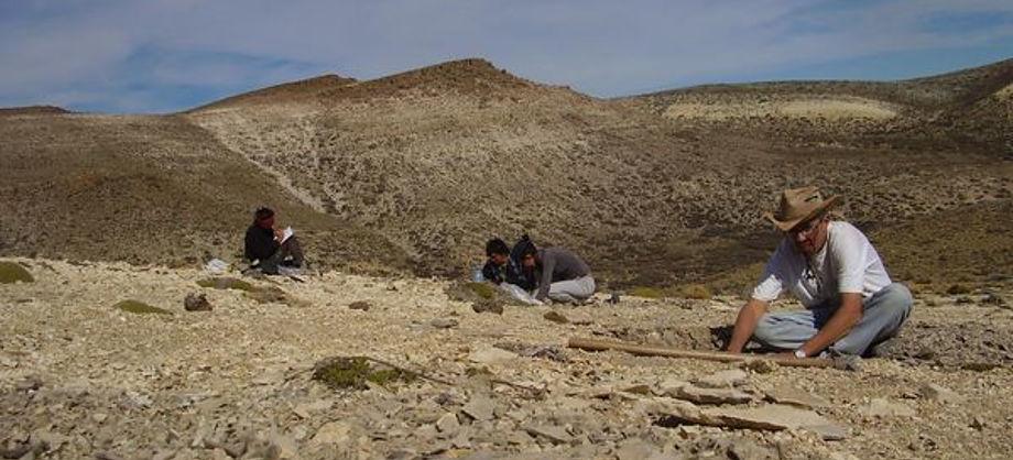 Ciencia: Descubren especies que vivieron antes que los dinosaurios