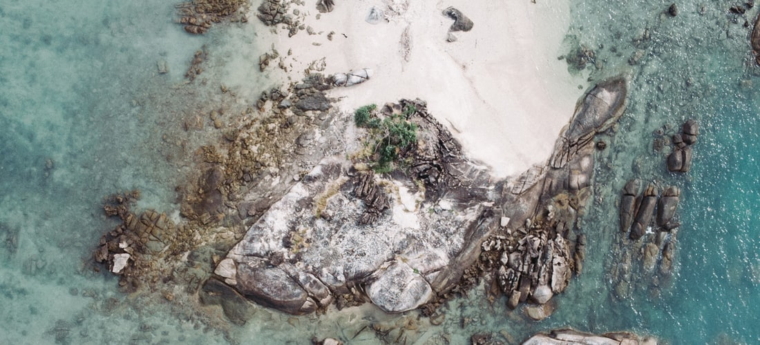 Ecología: La Contaminación del Agua